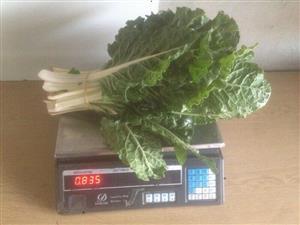Spinach/ Spinasie Bunches