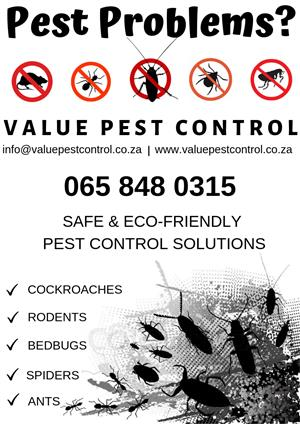 Value Pest Control - East Rand Pest Control Services