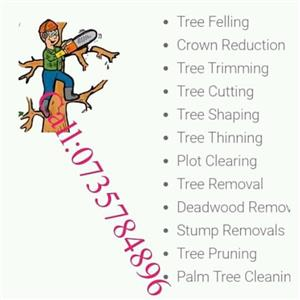 We do tree felling &trimming