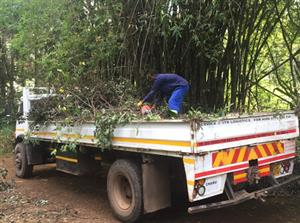 Tree Felling And Rubble Removal Pretoria Central 0678602638 - call us for emergency services