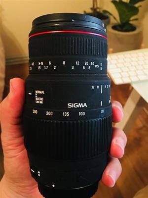 Sigma 70-300mm DG macro lens