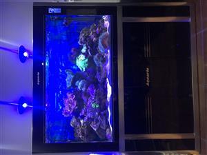 Aquarium / Caravan