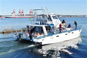 Boat rides, cruise, cruise boat, humpback whale, whale watching, whale and dolphin Durban