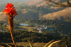 Mount Sheba  Shareblock  (Gold Crown Resort) Being offered as Donation