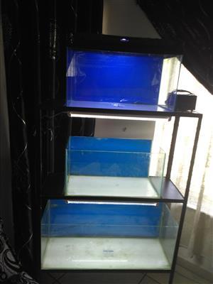 Aquarium breeding setup
