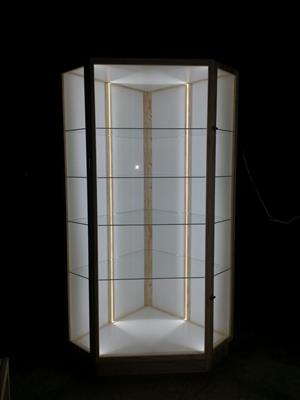 """Aviation  """"Display -Aircraft  Display /Show Cabinet with unrestricted view. - QUality Custom made Cabinets"""