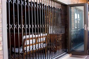 Trellis Doors  and Burglar Bars