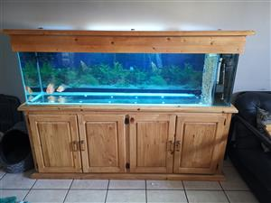 Cabinet and tank