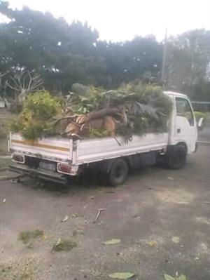 Tree felling rubble and furniture relocation