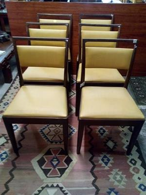 Imbuia chairs for sale