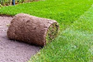 Top quality instant lawn supplier and installer -R40 per square meter for Kikuyu delivered and installed same time.