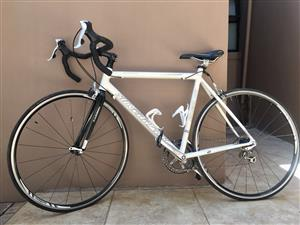 SILVERBACK Carbon Light-weight Performance Racing Bicycle