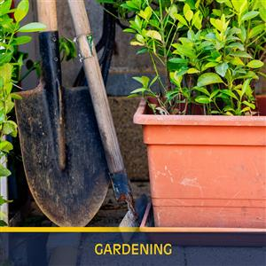 Variety of gardening tools and equipment