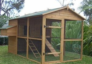 Chicken Coops And Chickens For Sale
