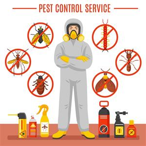 Well Established Pest Control Business in Gauteng for Sale