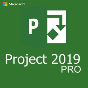 Microsoft office project 2019 professional