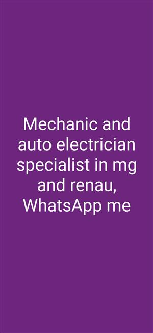 Auto electrical repairs and mechanical repairs