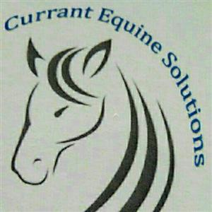 Currant Equine Solutions
