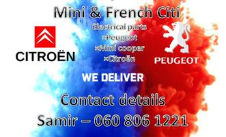 Mini and French are selling suspension parts for Peugeot all models