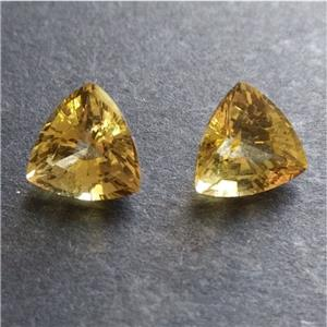 Natural Golden Apatite Ideal for Earrings