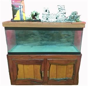 Imboia Fish Tank