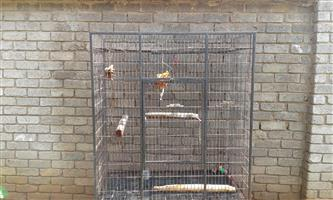 SELLING BIG PARROT CAGE