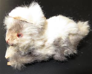 Little Furry Lamb