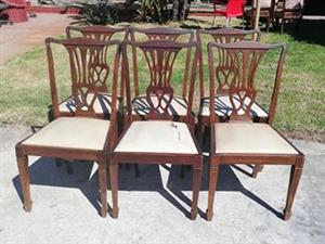 8 x Regency style chairs - Southfield area