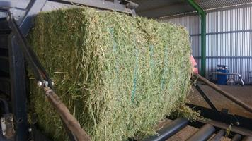 Lucern Hay Bales A grade & Poultry Feeds