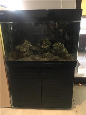 Red Sea 250 Fish Tank (Used no scrathes)