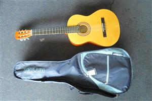 Companion Acoustic Guitar