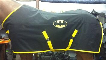 Large Winter Batman Blanket