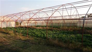 30x10m Greenhouse