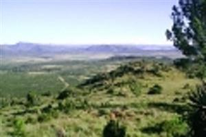 Conference & Wedding facilities on a Nature Reserve for sale - Eastern Cape