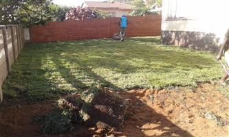 GO GREEN STAY GREEN INSTANT TURF ROLL ON LAWN by GRASS En ALL WE GRASS K.Z.N. 0722129857
