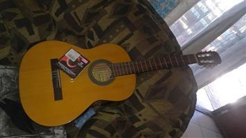 Gitar neg