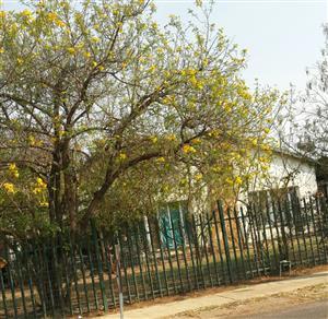 Huis tebhuur in Booysens, Pretoria.