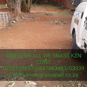 GRASS EN ALL WE WILL BEAT ANY QUOTE NO HIDDEN COST
