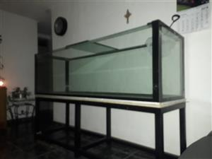 Fish Tank 2000x600x600 10mm glass 12mm Glass Bracing & Stand