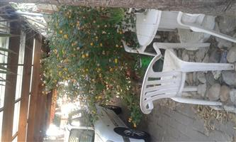 R5500 Beautiful apartment semi  furnished