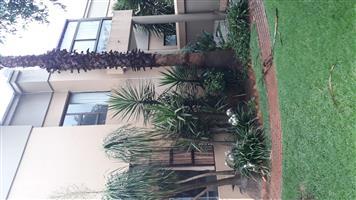 3 bedroom + garden flat to rent in Wingate park