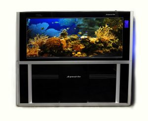 2 meter Aquaria AABZ2000 Aquarium