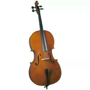 Cello 4/4 Student 2