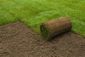 Instant Lawn Installation ,Compost and Lawn Dressing