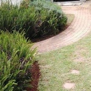 Garden and Pool Maintenance services