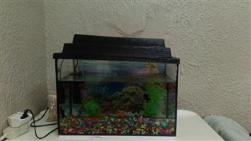 FISH TANK ONLY.