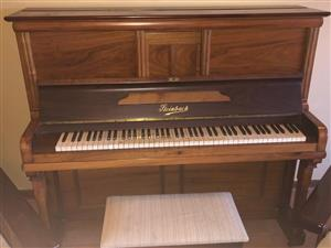 Steinbach Piano for sale