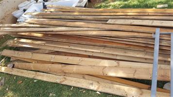 Origin Pine