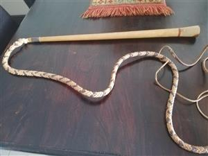 5 feet long, Hand Carved Handle, Cracking stock wip, Brand New.