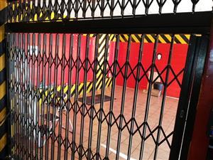trellidor style security door